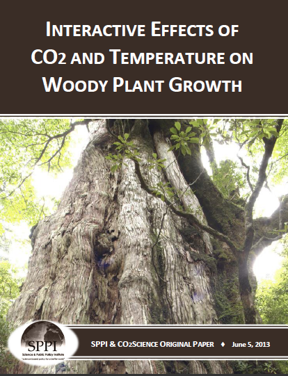 woody_plant_growth