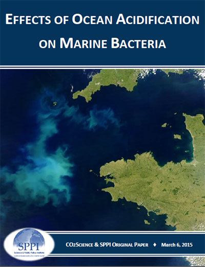 ocean_acidification_marine_bacteria