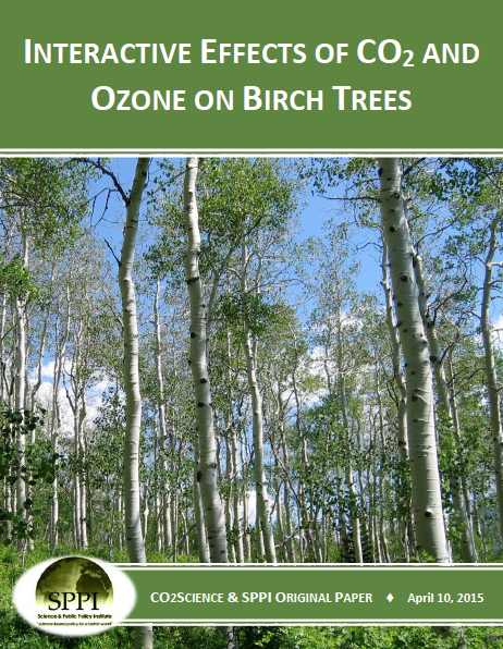 c02_ozone_effects_birch_trees