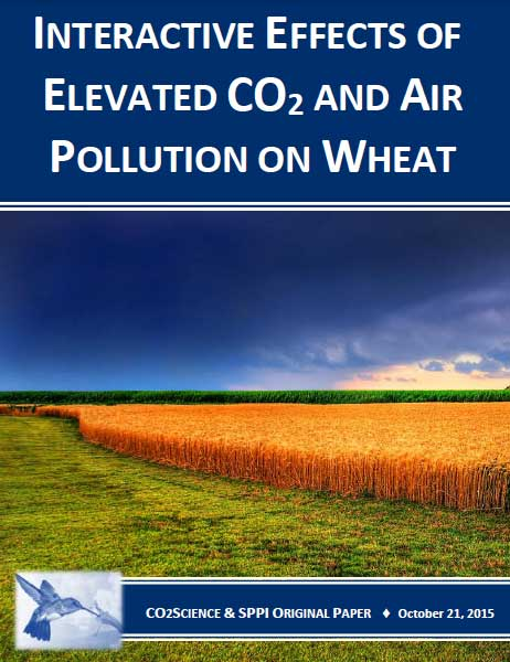 co2_and_air_pollution_on_wheat