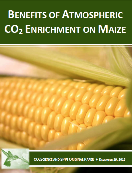 agricural_species_maize