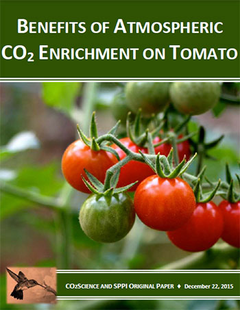 co2_enrichment_on_tomatos