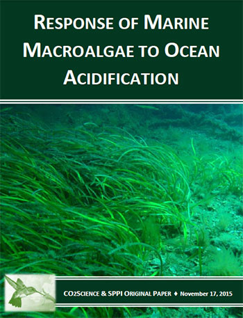 effects_of_ocean_acidification_on_macroalgae